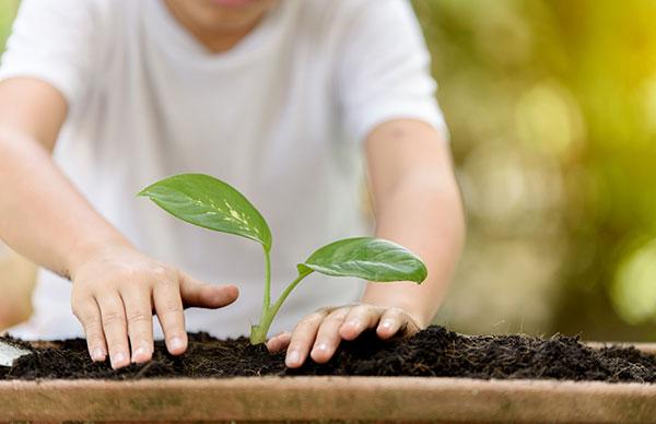 Gardening - Yooze - Inglês para crianças e adolescentes